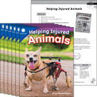 Helping Injured Animals 6-Pack