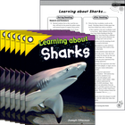 Learning about Sharks 6-Pack