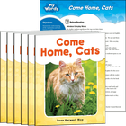 Come Home, Cats 6-Pack