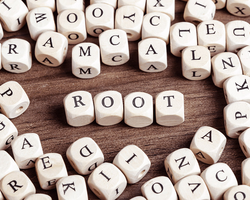 Building Vocabulary with Word Roots Builds Reading Comprehension – Part 1