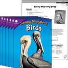 Saving Migratory Birds 6-Pack