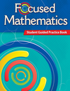 Focused Mathematics Intervention: Student Guided Practice Book Level 4