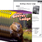 Building a Beaver Lodge 6-Pack