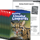 Raising Clouded Leopards 6-Pack