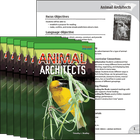 Animal Architects 6-Pack