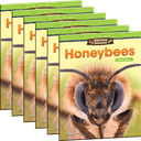 Amazing Animals: Honeybees: Place Value 6-Pack