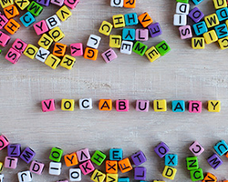 Building Vocabulary with Word Roots Builds Reading Comprehension – Part 2