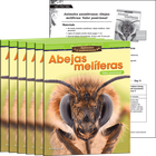 Animales asombrosos: Abejas melíferas: Valor posicional (Amazing Animals: Honeybees: Place Value) 6-Pack